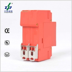 AC 220V 2P CE/TUV/UL Single Phase Surge Protection Device